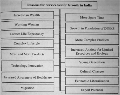 Reasons for Service Sector Growth in India