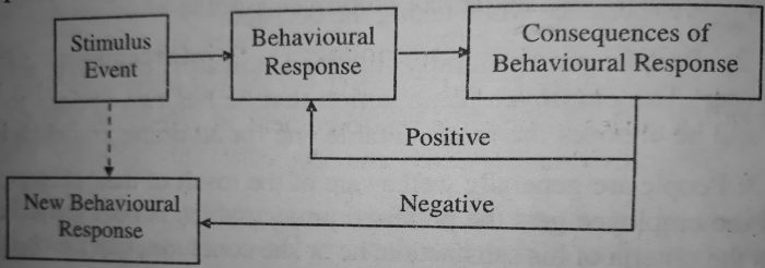 Effect of Behavioural Consequences on Learning