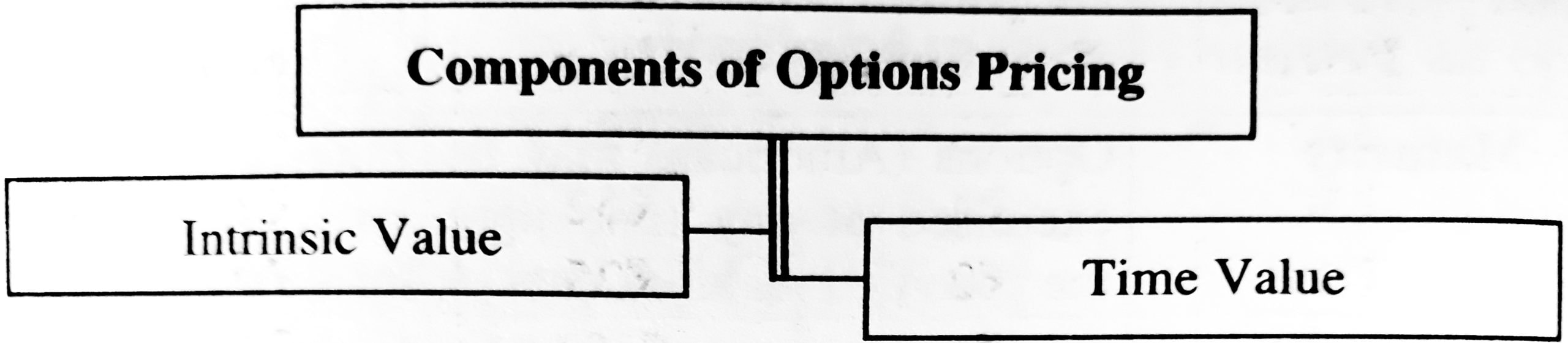 Components of Options Pricing
